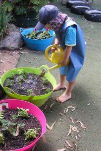 sustainability (4)